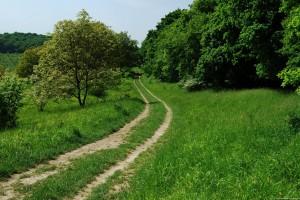 rural-way